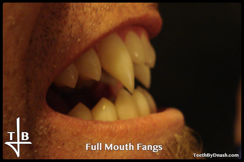 http://full_mouth-custom_fangs-teeth_by_dnash-04