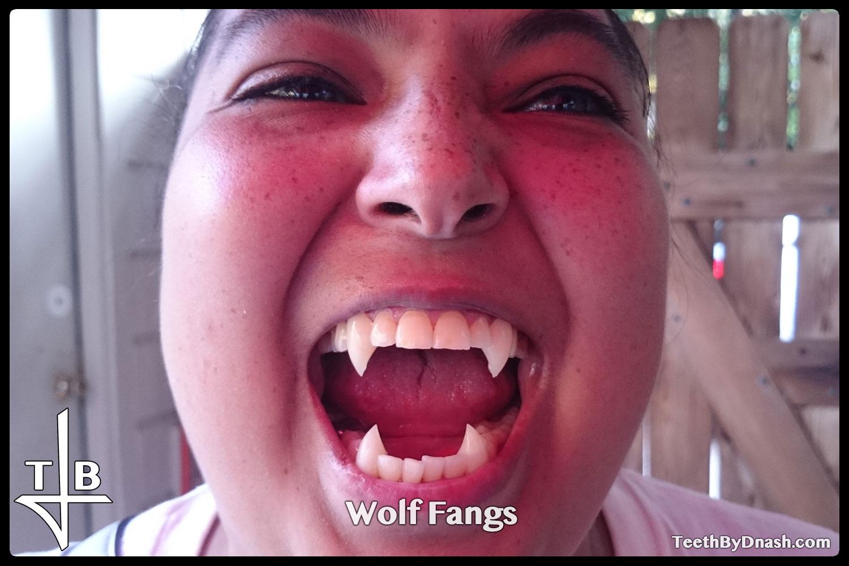http://wolf-custom_fangs-teeth_by_dnash-04