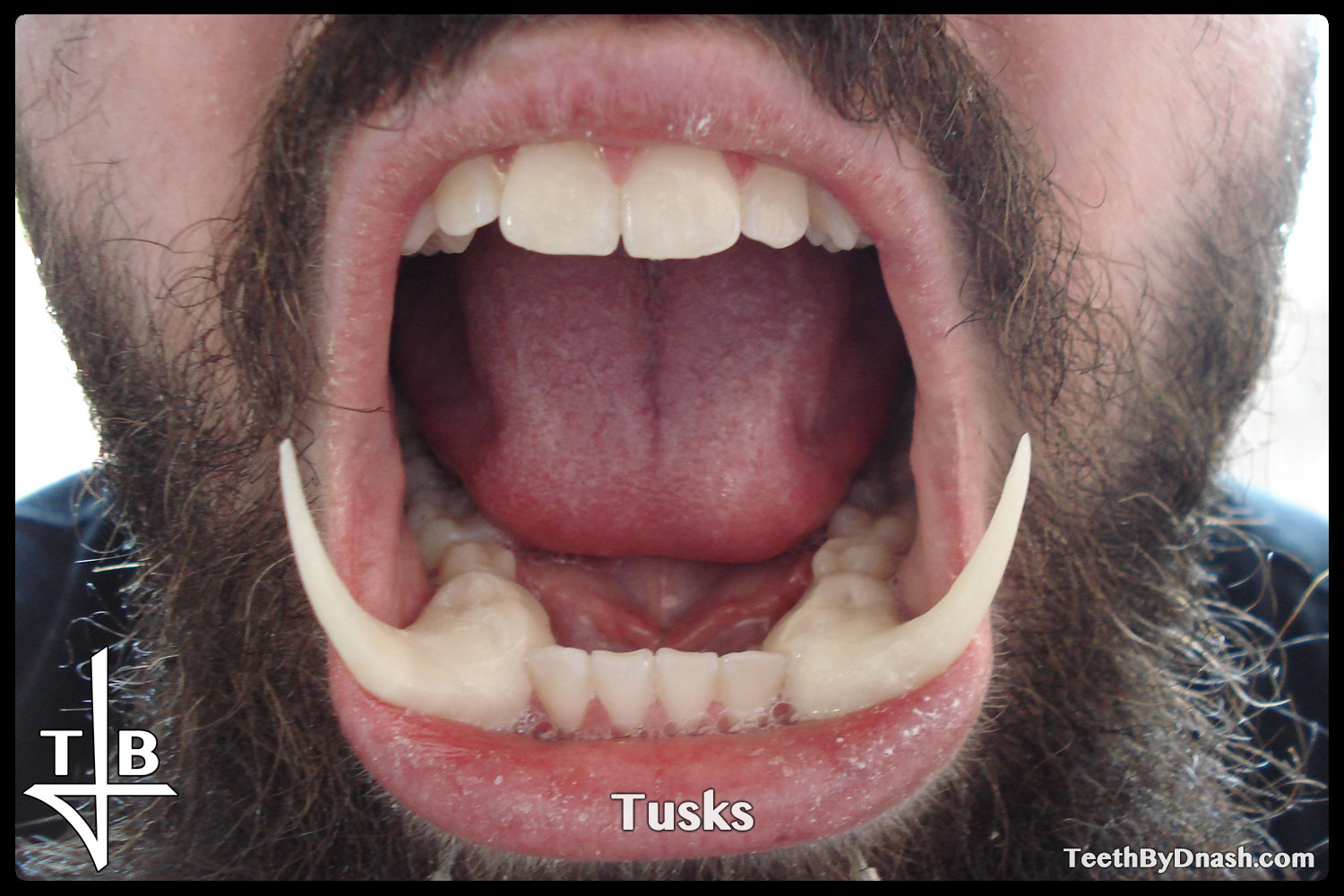 http://tusks-other_tooth_fx-teeth_by_dnash-09